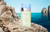 YMAL_dolce and gabbana light blue perfume women packshot