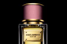 dolce and gabbana velvet love perfume
