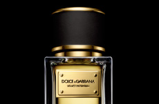 dolce and gabbana velvet patchouli perfume