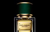 dolce and gabbana velvet vetiver perfume