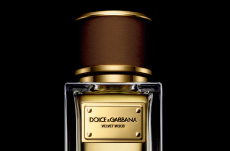 dolce and gabbana velvet wood perfume