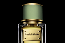 CROSSLINKS_dolce and gabbana velvet bergamot perfume