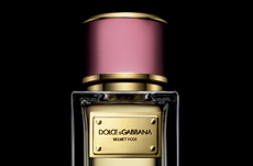 CROSSLINKS_dolce and gabbana velvet rose perfume