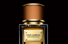 CROSSLINKS_dolce and gabbana velvet exotic leather perfume