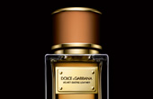 YMAL_dolce and gabbana velvet exotic leather perfume