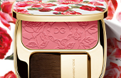 dolce and gabbana make up face blush of roses YMAL