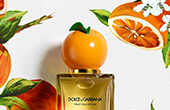 dolce and gabbana fruit collection orange_YMAL_170x110