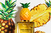 dolce and gabbana fruit collection pineapple_YMAL_170x110